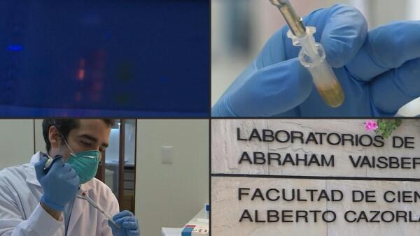 Perú crea una prueba para detectar COVID-19 en menos de una hora