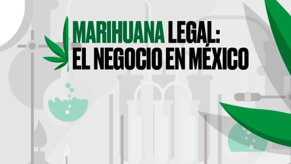 Marihuana legal / media principal página Especiales de Expansión