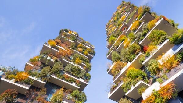 bosque vertical