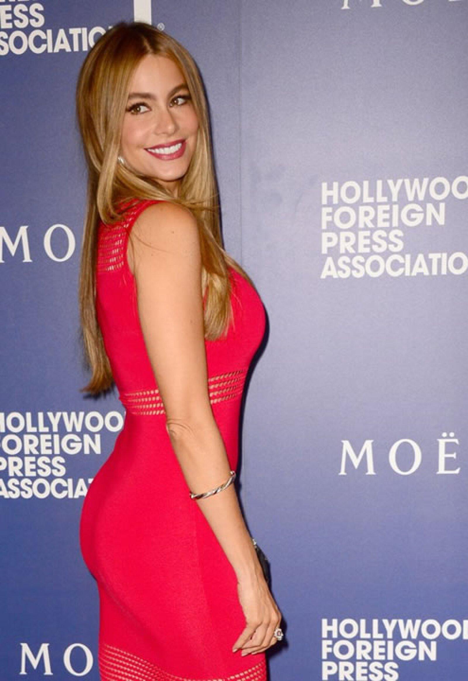 Sofía Vergara podrá ser favorita de los fans en Modern Family, peros sus cuatro nominaciones no le han dado ningún premio.
