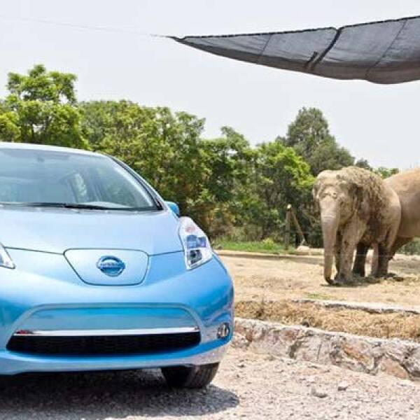 Como parte de la gira Nissan LEAF Tour 2011, el vehículo recorrió el parque Africam Safari, en Puebla.