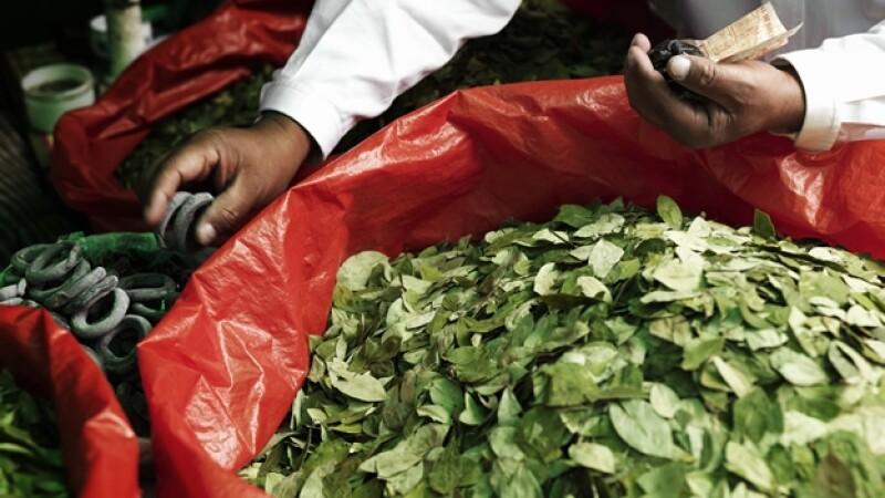 Las hojas de coca comercializadas en la Paz, Bolivia