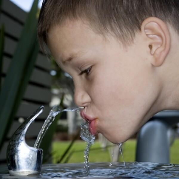 bebedero agua escuela
