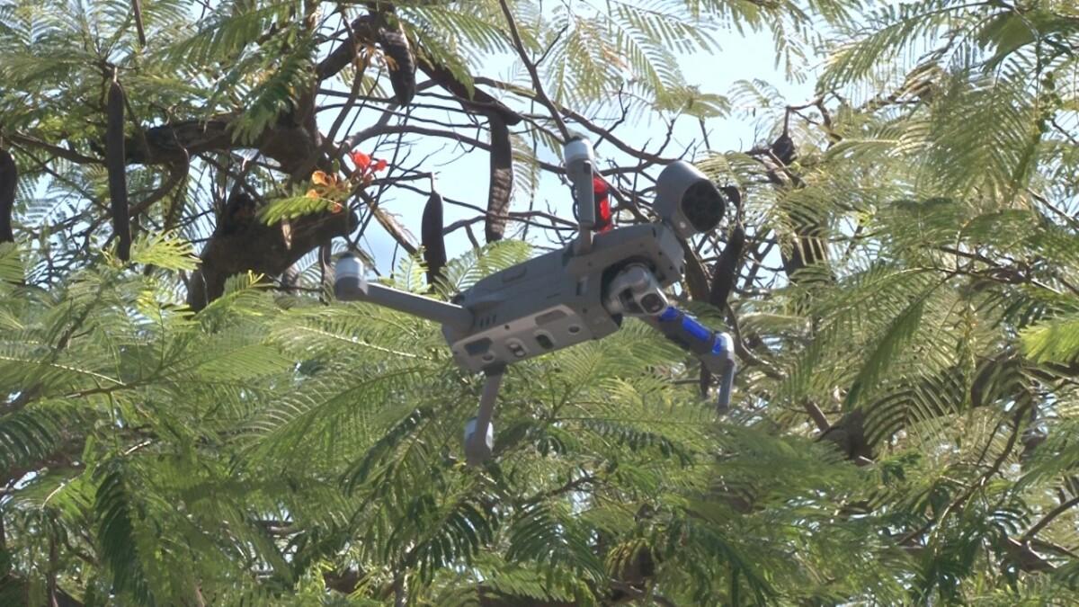 Drones para la seguridad ayudan a luchar contra el coronavirus en Jojutla
