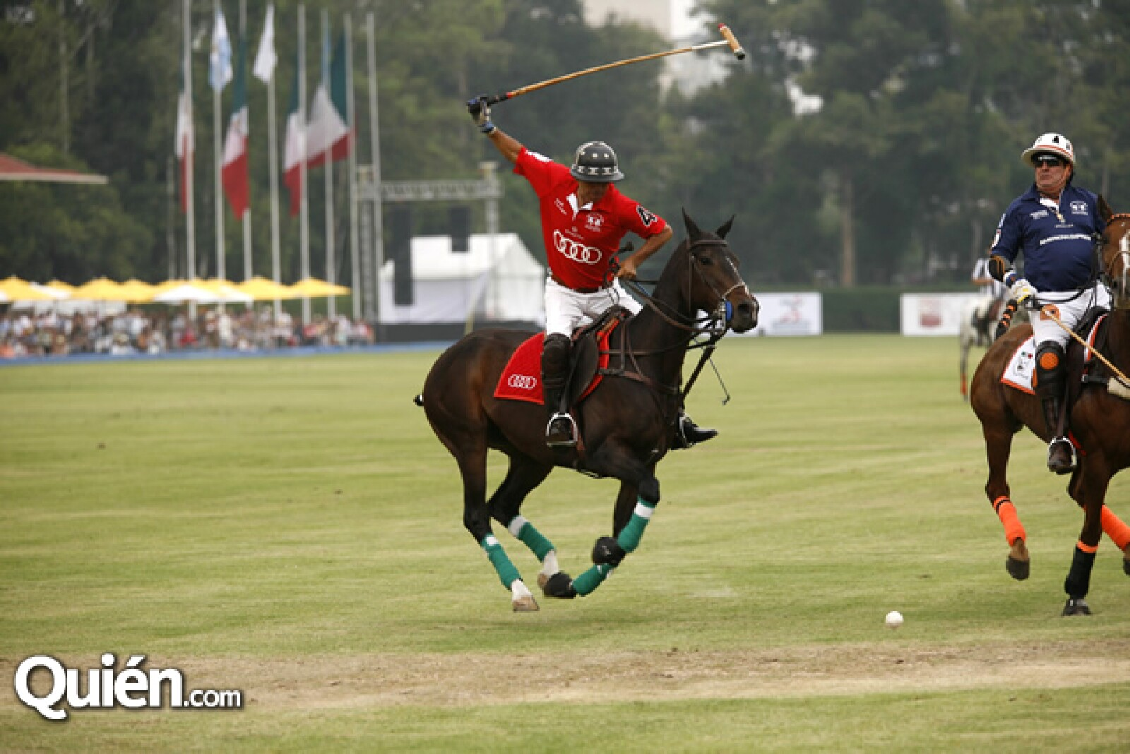 Audi Polo Cup