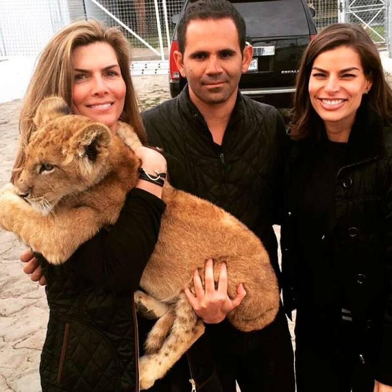 Las amigas disfrutaron de un sábado en compañía de leones, tigres y jaguares, sus nuevos amores.