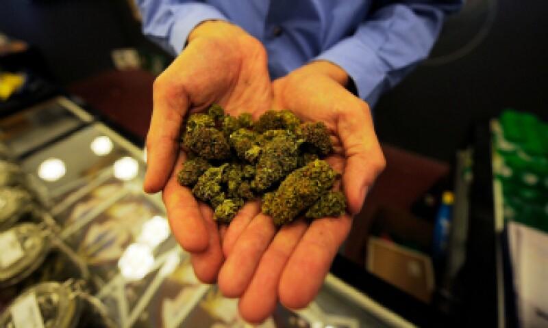 El debate sobre la marihuana se encuentra en el gobierno federal y en el Congreso de la Unión. (Foto: Getty Images)