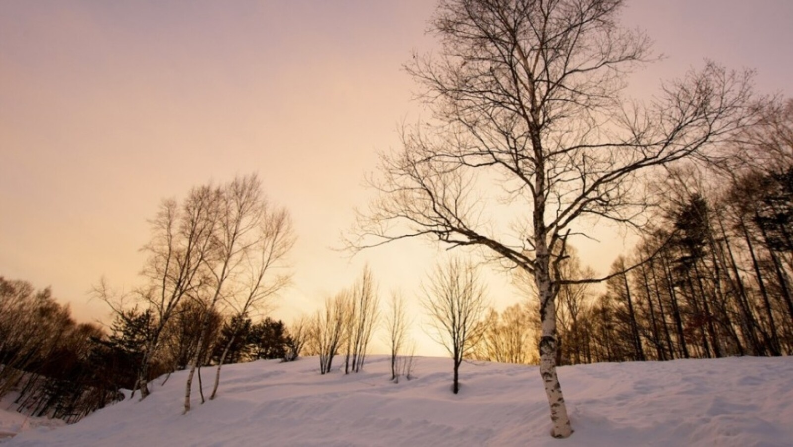 invierno viajes