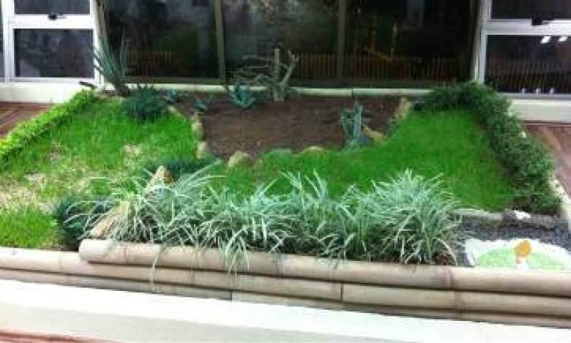 La instalación de azoteas verdes tiene un costo promedio de 1,500 pesos por metro cuadrado de superficie. (Foto: Cortesía Ecoesfera)