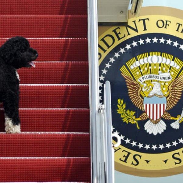 Bo ha acompañado a la familia Obama en muchos de sus viajes.