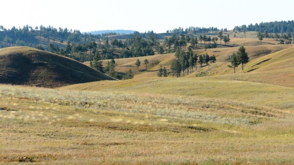 Black Hills, Dakota del Sur