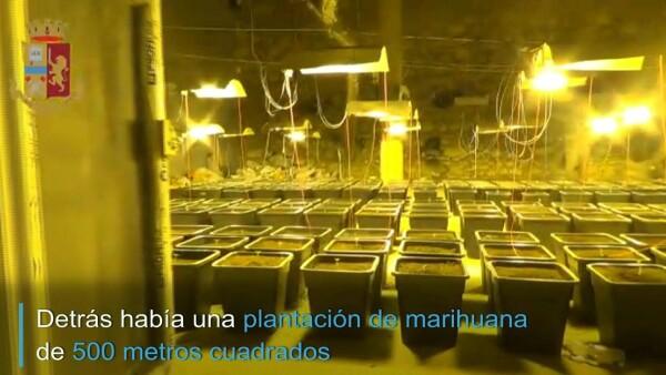 Policías italianos encuentran una plantación de marihuana en una casa aislada