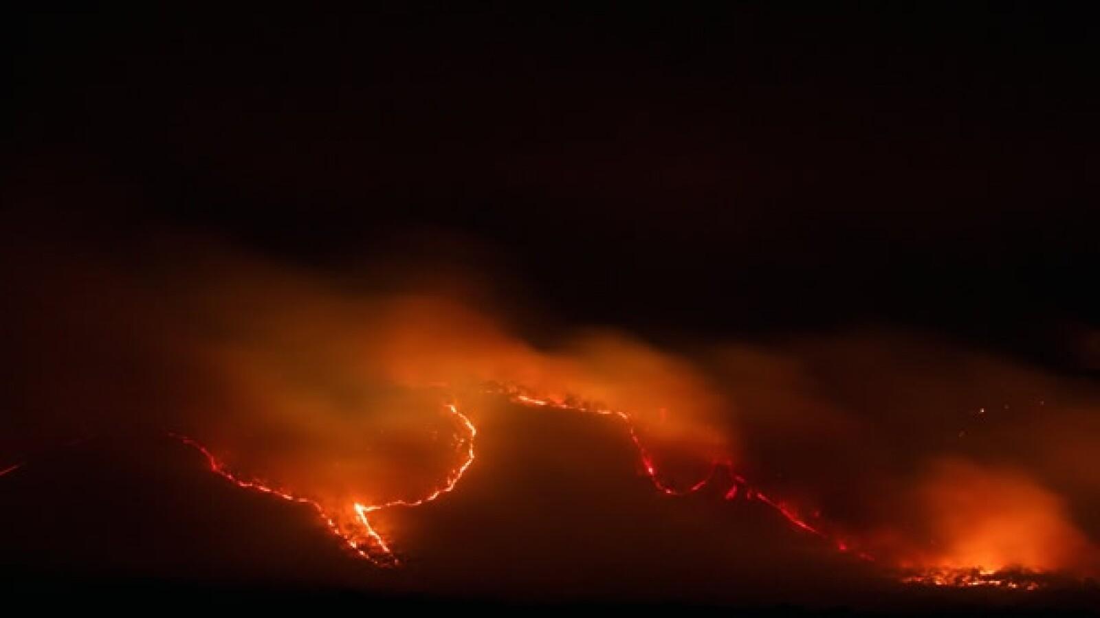 incendio La primavera guadalajara 7