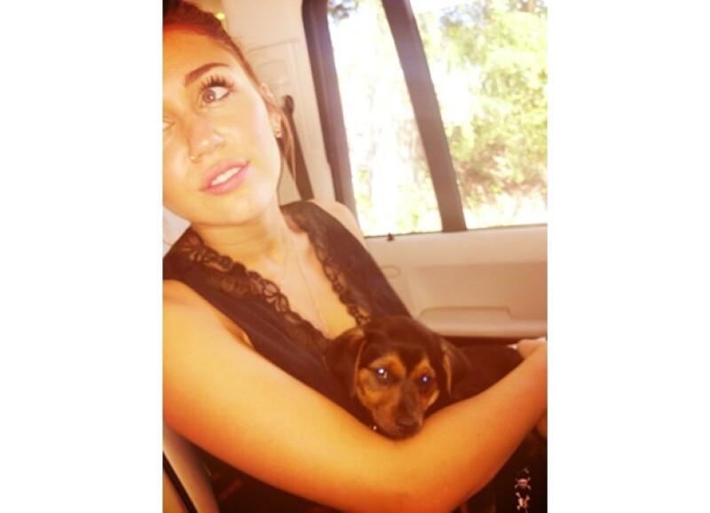 Miley disfruta el tiempo que pasa con su adorada mascota.