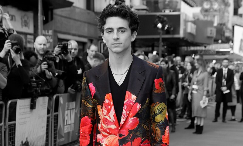 Timothee-Chalamet-Harry-Styles-