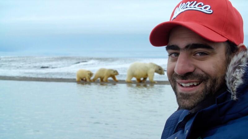 Arturo Islas Allende osos polares