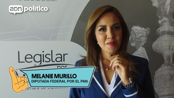 #YoLegislador Melanie Murillo
