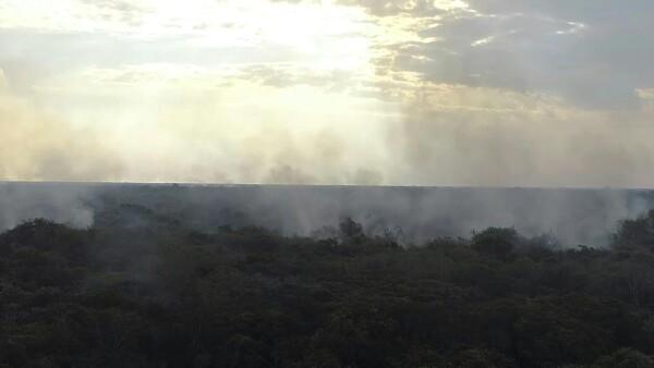 Los incendios en la Amazonía brasileña aumentaron gravemente en julio