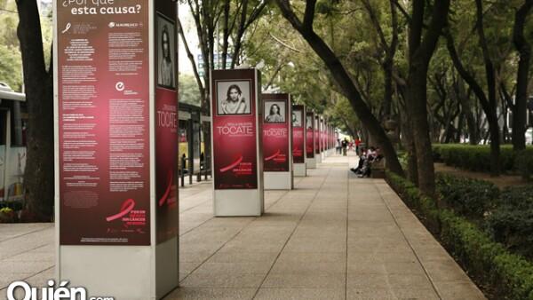 Este lunes 1 de octubre dio inicio Octubre Rosa. En Avenida Reforma se colocó una exposición con fotografías de varias mujeres que posaron ante la cámara del productor Pedro Torres.