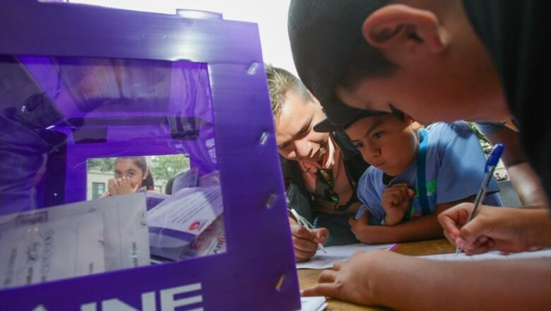 consulta infantil voto 2015