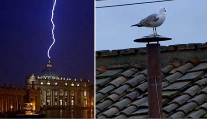 El anuncio de Jorge Mario Bergoglio fue recibido con gran humor en redes sociales. Desde los comentarios de `la mano de Dios´ hasta la gaviota que robó cámara en la chimenea de la Capilla Sixtina.