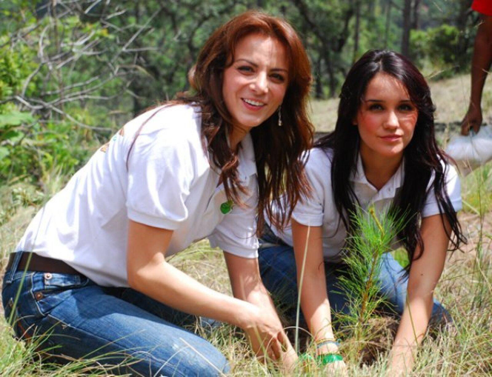 Dulce María y Silvia Navarro también se pusieron `verdes´ y participaron el año pasado en la reforestación de una Reserva de la Biósfera para la Mariposa Monarca.