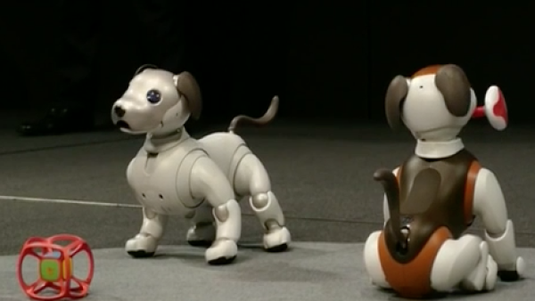 Aibo, el perro robot de Sony, tendrá una nueva función
