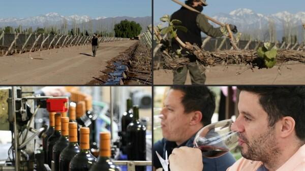 Más ventas y menos ganancias, los vinos argentinos con la copa medio llena