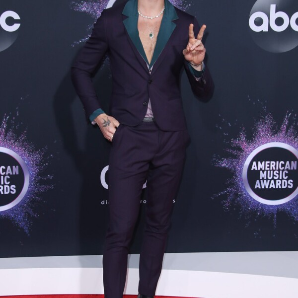 47th Annual American Music Awards, Arrivals, Microsoft Theater, Los Angeles, USA - 24 Nov 2019