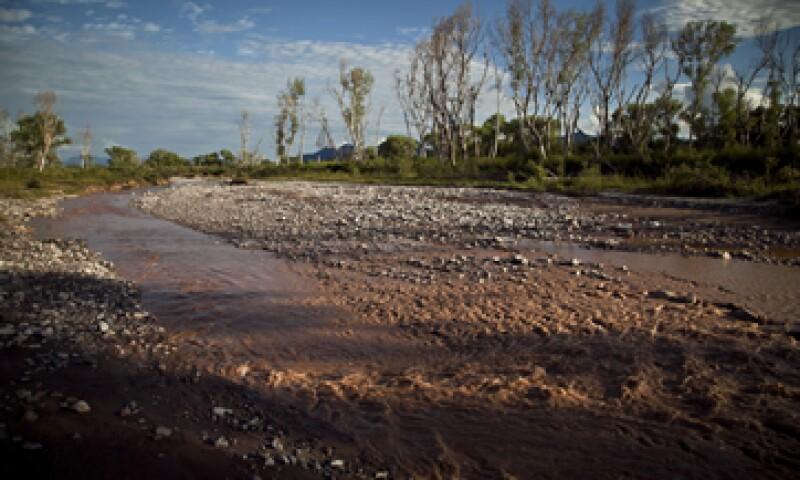 El desastre ecológico ocurrió el 6 de agosto y actualmente se hacen labores de limpieza en el río. (Foto: Cuartoscuro)