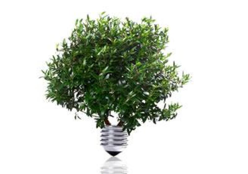 foco verde ecologico energica luz