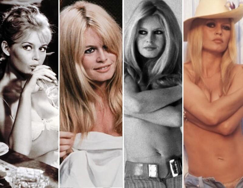 Bardot se retiró en 1973.