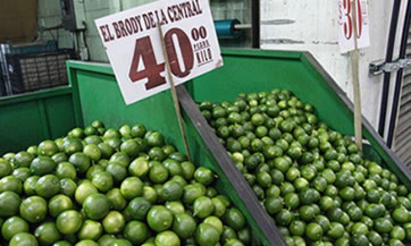 Las intensas lluvias y una plaga afectaron los principales campos productores de limón. (Foto: Cuartoscuro)