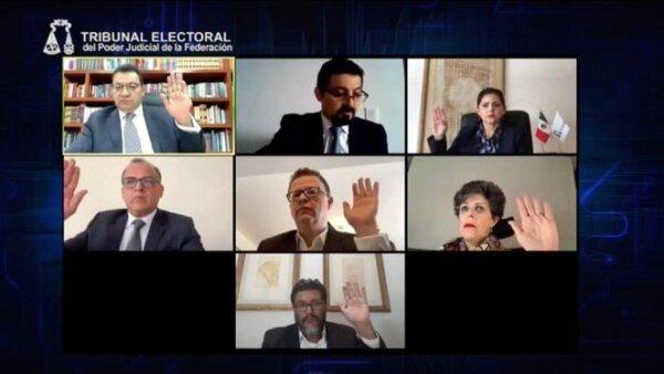 tribunal elecciones 2020