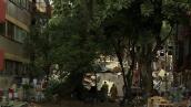 México camina lento por el camino hacia la recuperación, tras el 19S