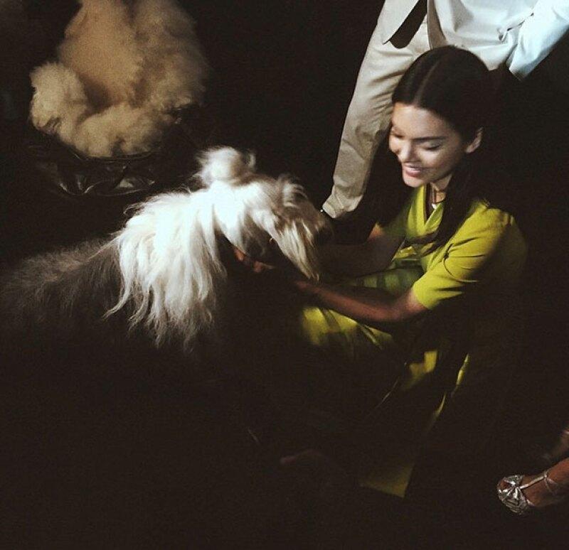 Kendall compartió en Instagram una foto con los perritos que eran parte del show.