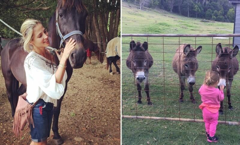 A Elsa le gusta cabalgar y al parecer a la pequeña India también le gustan los caballos.