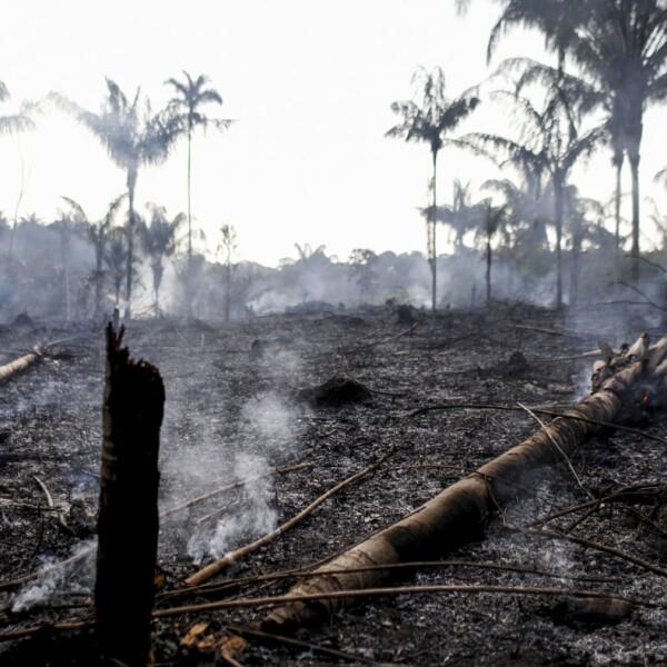 Incendio Amazonas-3