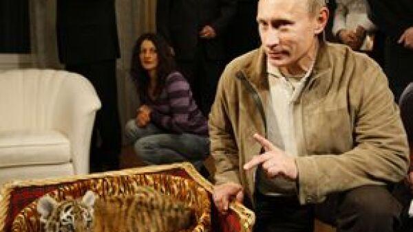 El Primer Ministro ruso dijo que le buscará un hogar adecuado al felino que le dieron como obsequio por su cumpleaños 56.