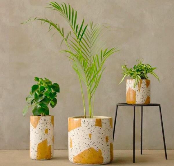 botanica-juarez-plantas-cdmx