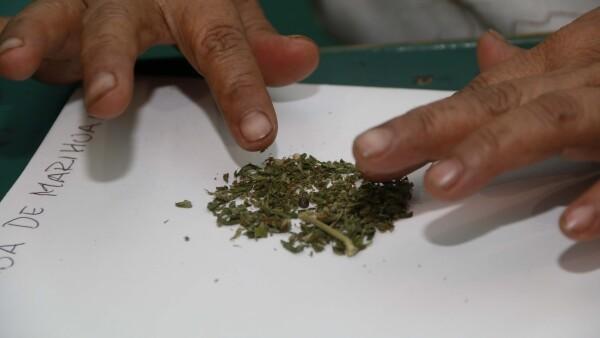 Marihuana_medicinal_3.jpg