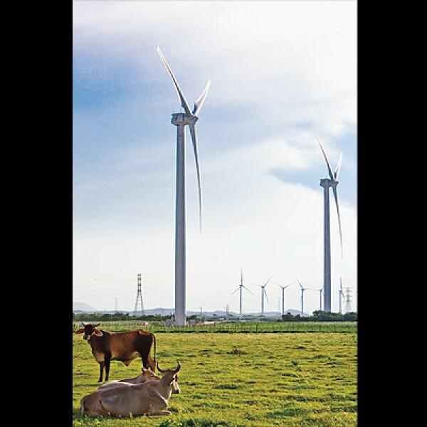 Su construcción implicó la colaboración de la Secretaría de Energía, la Comisión Federal de Electricidad y la Comisión Reguladora de Ebnergía y Eléctrica del Valle de México.