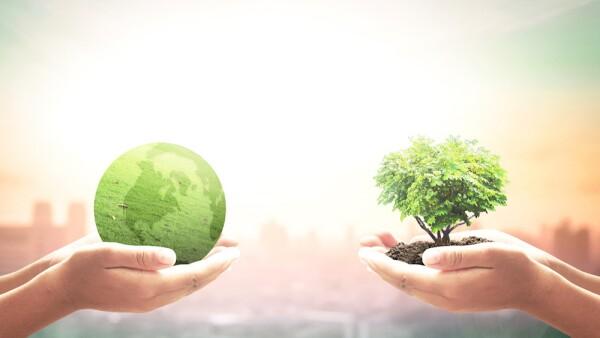 Política ambiental - medio ambiente - economía - políticas públicas