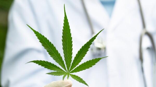 cannabis-medicinal.jpg