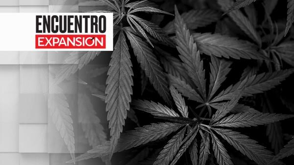 Debate marihuana