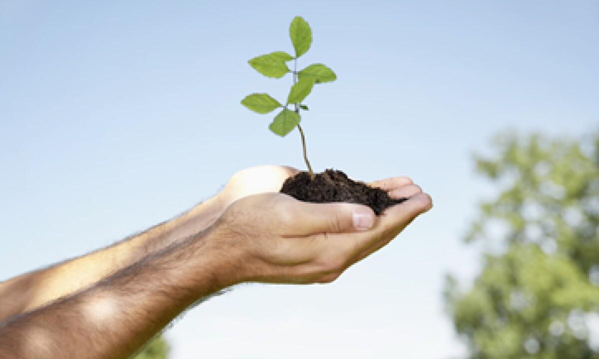 Guía para ser en una empresa ambientalmente responsable