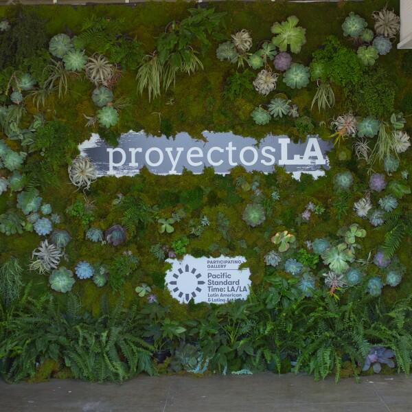 Proyectos LA