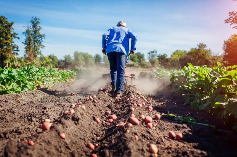 agrícola Canadá