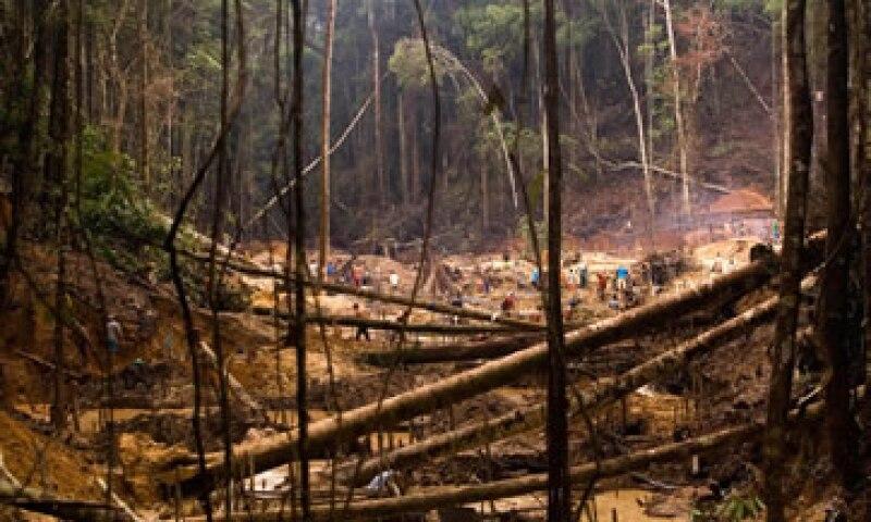 Brasil alberga un 60% de la Amazonia, una selva de unos 5.5 millones de kilómetros cuadrados. (Foto: AP)