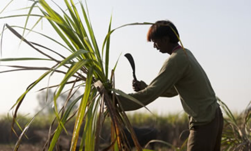 Los productores afirman que sus ganancias se verán impactadas en 1,000 mdd entre 2013 y 2014.  (Foto: Getty Images)